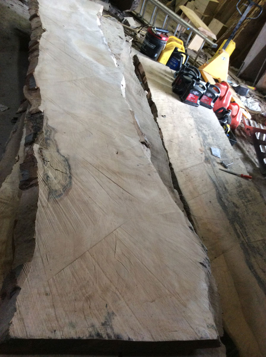 Salvaged Beech DIY Slab